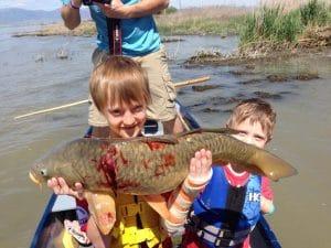 Kids, Carp, Bowfish