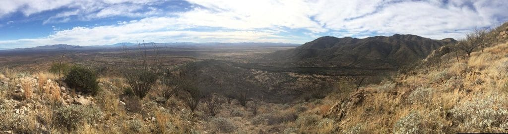Arizona Panoramic View