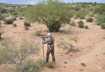 Coyote Hunting in the Desert