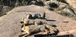 PROHIBITING PREDATOR CONTESTS-