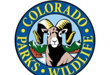 COLORADO RECIEVES RECORD-BREAKING BIG GAME APPLICATIONS