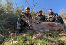 ARIZONA COUES DEER RUT