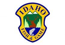 DEAD DEER IN IDAHO PROMPT DISEASE TESTING
