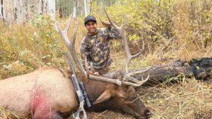 Elk two