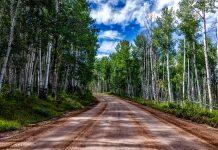 COLORADO STATE LAND