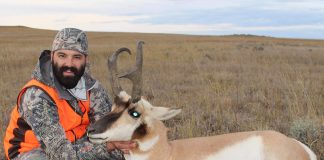 Top four antelope cartridges