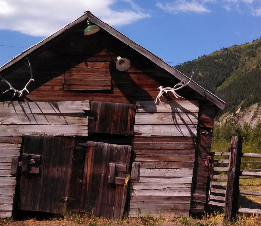 WYOMING TO KEEP SHED CLOSURE IN PLACE UNTIL MAY 1ST