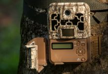 ARIZONA MOVES FORWARD ON TRAIL CAM BAN