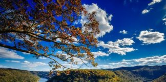 NEW LAND IN WEST VIRGINIA